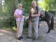 Pony and dog trip europe - Harrie Huijben pony en hond